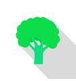 fresh broccoli icon flat style vector image