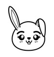 isolated cute rabbit face vector image vector image