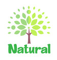 natural tree white background image vector image vector image