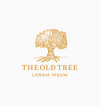 the old tree abstract sign symbol or logo vector image