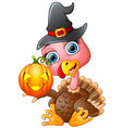 turkey cartoon with witch hat holding pumpkin vector image vector image
