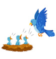 Bird and its babies in the nest vector image vector image