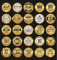 collection golden badges labels laurels and vector image vector image