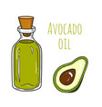 colorful hand drawn avocado oil bottle vector image vector image