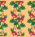 gazania flower seamless pattern vector image