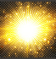 sun light and sunburst with glittering on vector image vector image