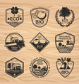 vintage natural labels collection vector image vector image