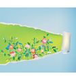 Paper scroll background with flowers - abstract vector image