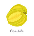 carambola or starfruit exotic fruit icon vector image vector image