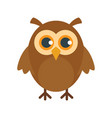 graduation owl in flat style vector image vector image