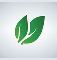 green leaf icon isolated on white background vector image
