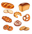 set of bread products isolated vector image