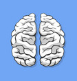 black and white human brain vector image vector image