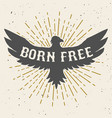 born free hand drawn eagle on grunge background vector image