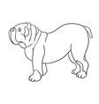 cute cartoon contour bulldog isolated on white vector image vector image