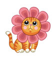 little cute cat with headgear in forme vector image