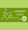 medical cannabis cannabidiol cbd molecular vector image