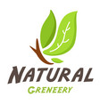 natural greneery leaves background image vector image vector image