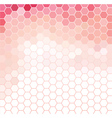 Pink and White Grid Pattern vector image vector image