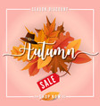 autumn sale sbanner background design vector image vector image