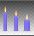 burning candles isolated vector image vector image