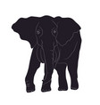 elephant goes drawing silhouette vector image