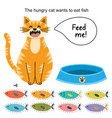 feed cat activity page for kids vector image