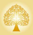 golden bodhi tree