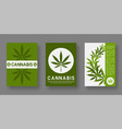 medical cannabis cover templates set with leaf vector image vector image