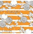 Oranges on orange stripes vector image