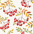 Rowan berries seamless autumn pattern vector image