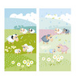 sheeps on green hills with white flowers vector image
