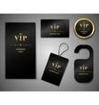 Vip cards design template vector image vector image