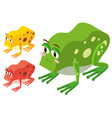 3d design for different color frogs vector image