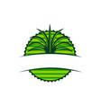 emblem leaf template blank vector image