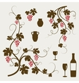 Grape vines wineglasses and decorative elements vector image