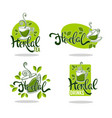 green and herbal tea collection of organic logo vector image vector image