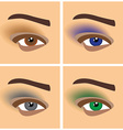 Makeup eyes vector image