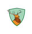 Red Stag Deer Head Shield Cartoon vector image vector image