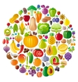 Vegetarian icon set with fruits berries and vector image vector image