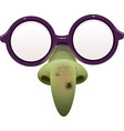 Witch mask for masquerade Glasses and green nose vector image