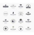 Vintage Logos Design Templates Set Design vector image