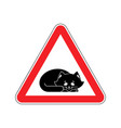 attention sleeping cat caution pet red triangle vector image vector image