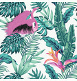 exotic bird pink flamingo leaves seamless white vector image vector image