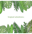 frame with leaves tropical plants colorful vector image vector image
