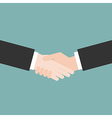 Hands handshaking close up vector image