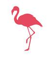 pink flamingo logo vector image vector image