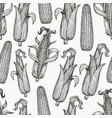 seamless pattern with corn on cob with leaves vector image vector image