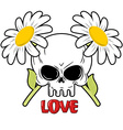 Skull and flowers Daisies and head of skeleton vector image vector image