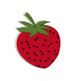 strawberry fruit fresh natural food organic vector image vector image